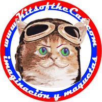 Kitsofthecat