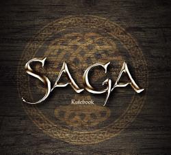 saga-fw